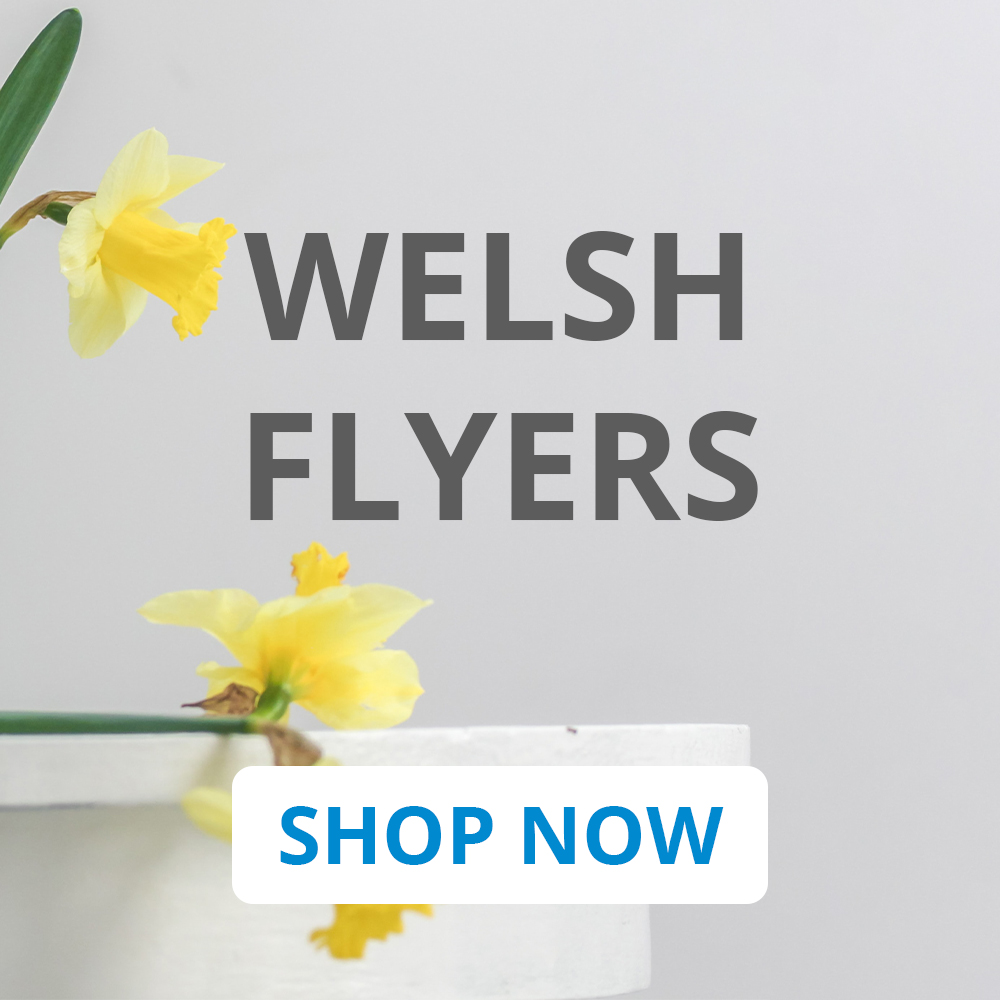 Welsh Flyers