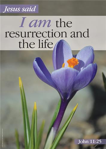 I Am - Resurrection and the life