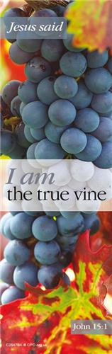 I Am - The Vine