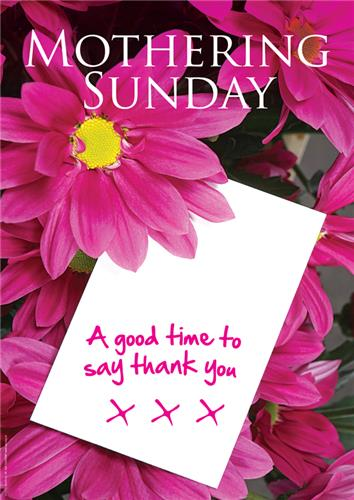 C3065mp mothering sunday a good time to say thank you message product information m4hsunfo