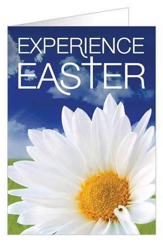 Experience Easter (Flower)