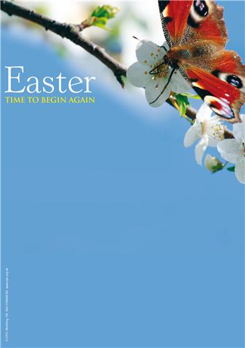 Easter a time to begin again