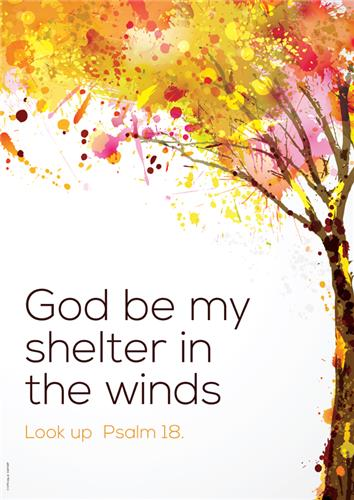 Shelter in the Winds