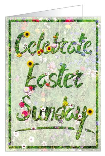 C4969gcb celebrate sunday customisable greeting card christian celebrate sunday customisable greeting card look inside m4hsunfo
