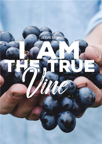 I am True Vine